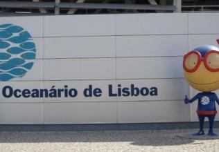The ADA / Lisbon Oceanarium Commission has Completed