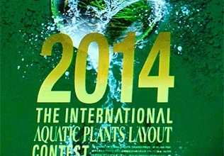 The International Aquatic Plants Layout Contest 2014