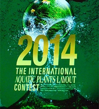 The International Aquatic Plants Layout Contest 2014