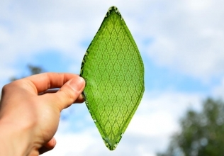The First Man Made Leaf Converts Light and Water to Oxygen